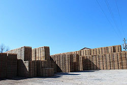 Stacks of Pallets